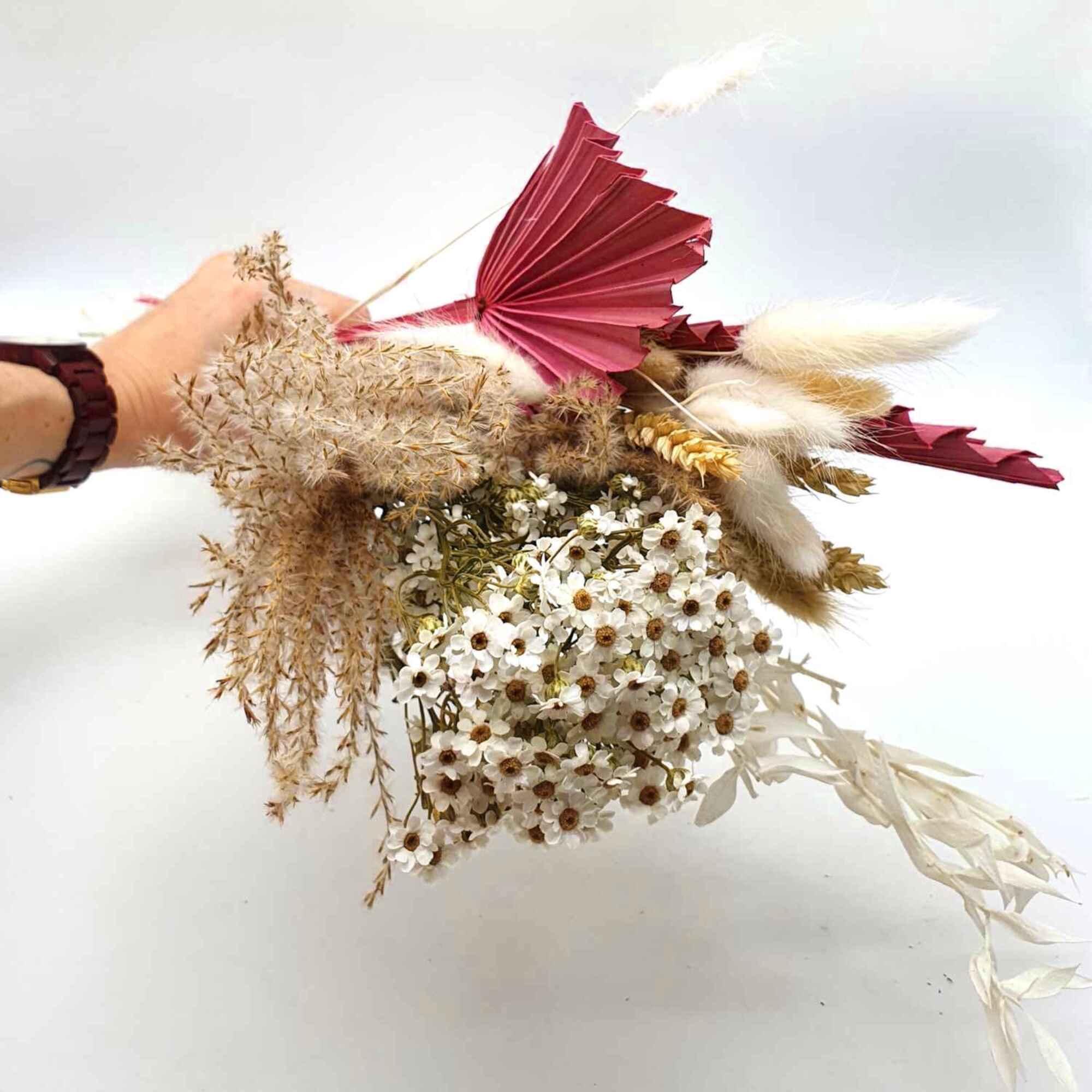 Trockenblumen Dried Flower für Blumendeko