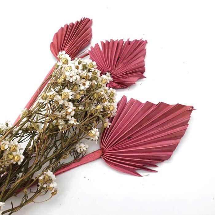Trockenblumen Dried Flower für Tür Dekoration